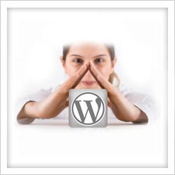 3 Reasons Small Businesses Choose WordPress