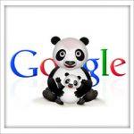 googlepanda1