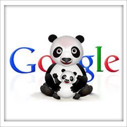 What You Need to Know About Google Panda 4.0