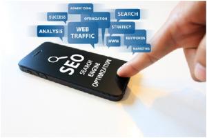 Search Engine Optimization Specialist